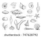hand drawn seashells collection.... | Shutterstock . vector #747628792