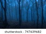 dark forest at night. blue... | Shutterstock . vector #747639682