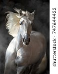 Small photo of White andalusian horse with long mane on black background in motion