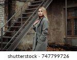 portrait of a beautiful girl ...   Shutterstock . vector #747799726
