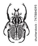 black and white illustration of ... | Shutterstock .eps vector #747884095
