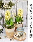easter home decoration with...   Shutterstock . vector #747915985