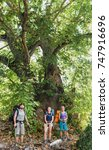 Small photo of Three friends hikers standing near extremely Old tree sycamore or platan in Turkey, while travelling by Lycian Way