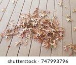 fallen brown leaves on a... | Shutterstock . vector #747993796