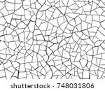 the cracks texture white and... | Shutterstock .eps vector #748031806