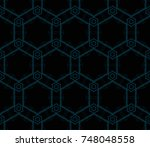 modern stylish texture.... | Shutterstock . vector #748048558