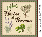 vector   herbes de provence.... | Shutterstock .eps vector #74810983