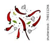 vector kitchen pepper flavor...   Shutterstock .eps vector #748111246