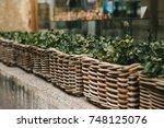Street Decor. Series Of...