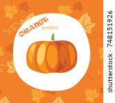 orange color learning card for... | Shutterstock .eps vector #748151926