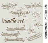 vanilla pods and flowers | Shutterstock .eps vector #748205728