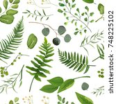 seamless eucalyptus greenery... | Shutterstock .eps vector #748225102