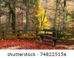 bench in the autumn landscape ... | Shutterstock . vector #748225156