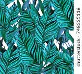 watercolor seamless pattern...   Shutterstock . vector #748235116
