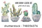 watercolor hand drawn cactus in ... | Shutterstock . vector #748356376