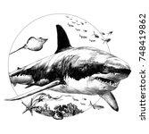 shark sketch for t shirt vector ... | Shutterstock .eps vector #748419862