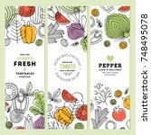 vegetables vertical banner... | Shutterstock .eps vector #748495078