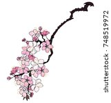 hand drawn cherry branches with ... | Shutterstock .eps vector #748519972