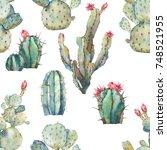 watercolor cactus seamless...   Shutterstock . vector #748521955