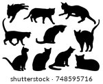 Stock vector set of ten cats silhouettes on white background 748595716