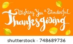 wishing you a wonderful... | Shutterstock .eps vector #748689736