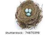Three Light Blue Robin Eggs In...