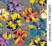 tropical flower hibiscus...   Shutterstock .eps vector #748718605