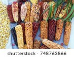 dried ears of corn and... | Shutterstock . vector #748763866
