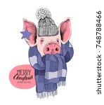 christmas card. portrait of the ... | Shutterstock .eps vector #748788466