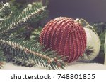 christmas decorative elements... | Shutterstock . vector #748801855