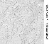 topographic map background... | Shutterstock .eps vector #748921906