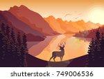 vector illustration of mountain ...   Shutterstock .eps vector #749006536