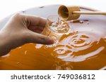 sweet sake | Shutterstock . vector #749036812