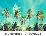 beautiful beach. view of nice... | Shutterstock . vector #749098225