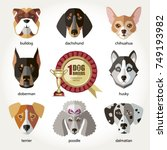 dogs set icon head muzzles... | Shutterstock .eps vector #749193982