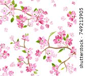 blooming spring flowers pattern ... | Shutterstock .eps vector #749213905