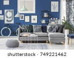 grey pouf on carpet and lamps... | Shutterstock . vector #749221462