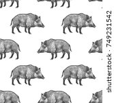boars. seamless pattern with... | Shutterstock .eps vector #749231542