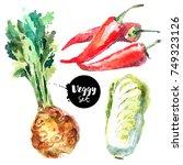 watercolor vegetables set.... | Shutterstock . vector #749323126