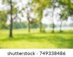 blur of city park bokeh...   Shutterstock . vector #749338486