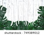 green leaves  tropical palm... | Shutterstock . vector #749389012