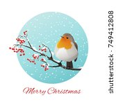 christmas vector with robin... | Shutterstock .eps vector #749412808