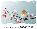 Robin Perched On Branch With...