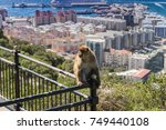 Gibraltar  Monkey Rock  A...