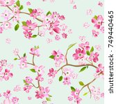 blooming spring flowers pattern ... | Shutterstock .eps vector #749440465