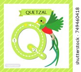 letter q uppercase cute... | Shutterstock .eps vector #749460418