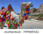 camel decorated in colourful... | Shutterstock . vector #749485432