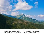 panoramic view of summer... | Shutterstock . vector #749525395
