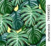leaf pattern   Shutterstock . vector #749593072