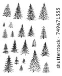 ink sketches of spruce trees on ... | Shutterstock . vector #749671555
